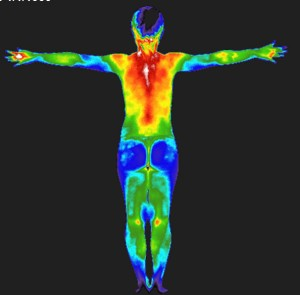 Whole Body Thermograph Scan