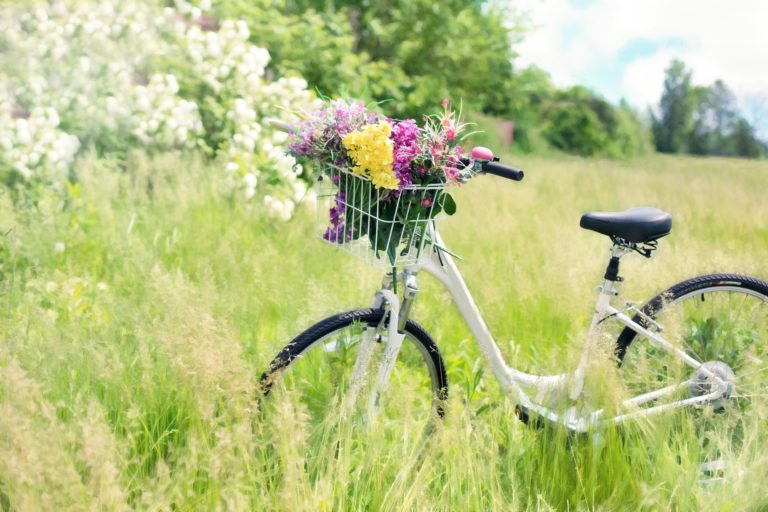 Background Image of Bike With Flowers In The Grass
